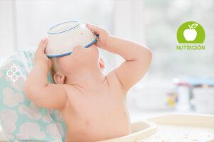 dietas para bebes de 1 ano