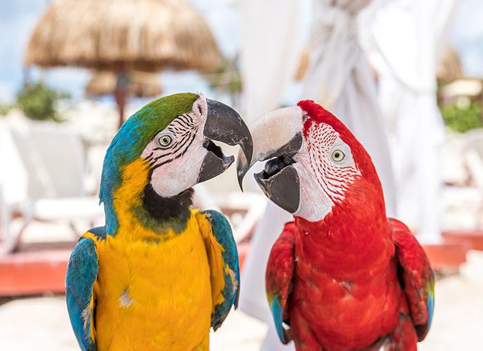 Destino turístico de Cancún